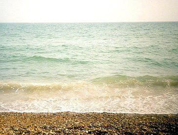 Sussex shingle beach